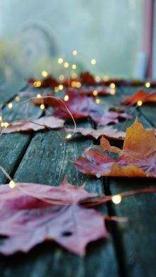 Light Leaf up