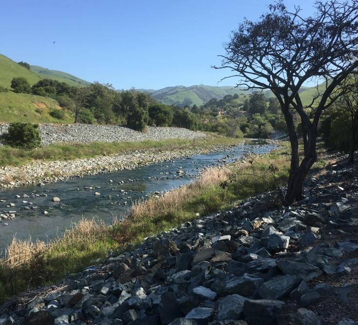 Niles Creek Trail